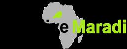 Initiative Maradi